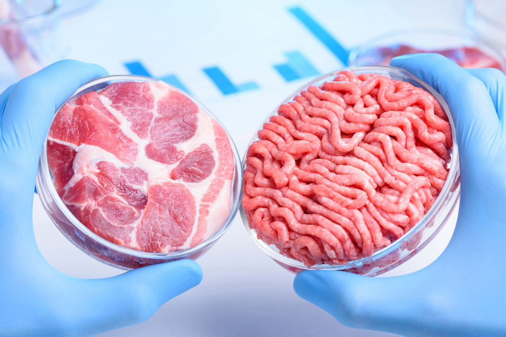Beyond Burger, Impossible Burger and other products that mimic meat: are they good for health and the environment?