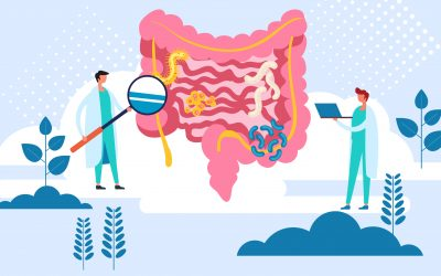 Effectiveness of exercise to prevent and mitigate diabetes: An important role of the gut microbiota